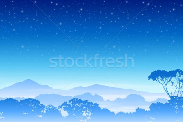 Puslu orman manzara ağaçlar gece gökyüzü vektör Stok fotoğraf © Binkski