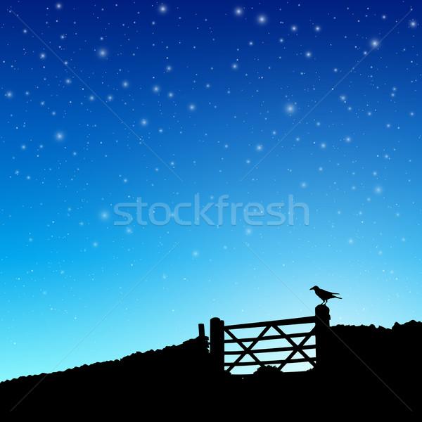 Boerderij poort silhouet nachtelijke hemel sterren vector Stockfoto © Binkski