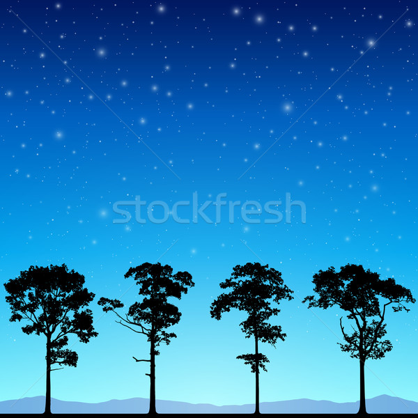 Lijn bomen silhouet nachtelijke hemel sterren vector Stockfoto © Binkski