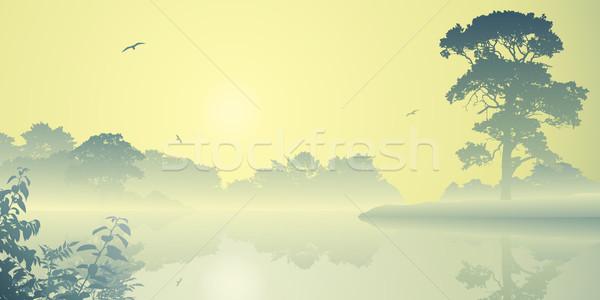 Puslu manzara nehir gündoğumu gün batımı ağaçlar Stok fotoğraf © Binkski