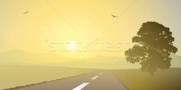Panorama strada paese albero sunrise prato Foto d'archivio © Binkski
