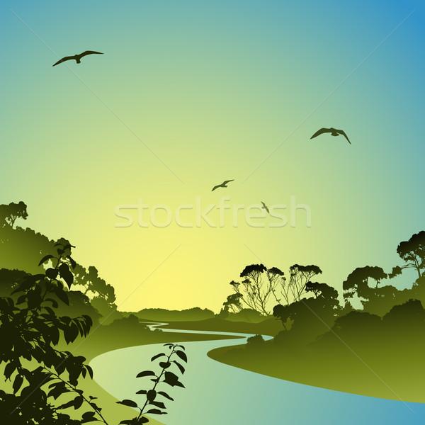 River Landscape Stock photo © Binkski