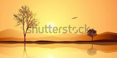 Arbre silhouette désert paysage oiseau coucher du soleil Photo stock © Binkski