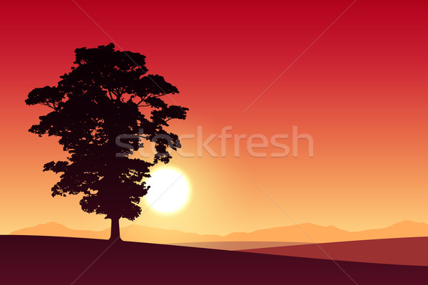 Arbre rouge coucher du soleil sunrise fond Photo stock © Binkski