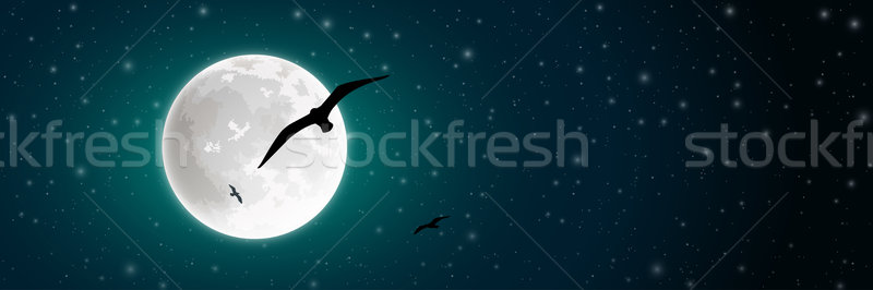 Moon and Bird Stock photo © Binkski