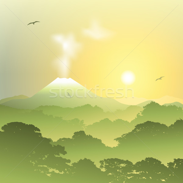 Vulkán tájkép ködös erdő naplemente napfelkelte Stock fotó © Binkski