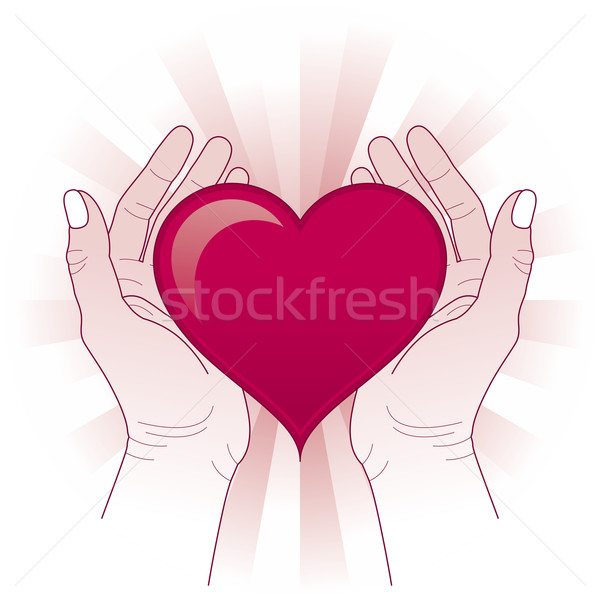 Hands holding the heart  Stock photo © Bisams