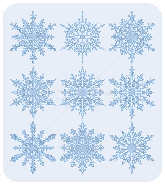 セット 雪 9 異なる 詳しい ストックフォト © Bisams