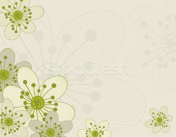 フローラル 美しい 花 デザイン 春 抽象的な ストックフォト © Bisams