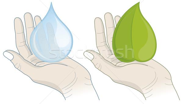 手 水滴 葉 実例 環境 水 ストックフォト © Bisams