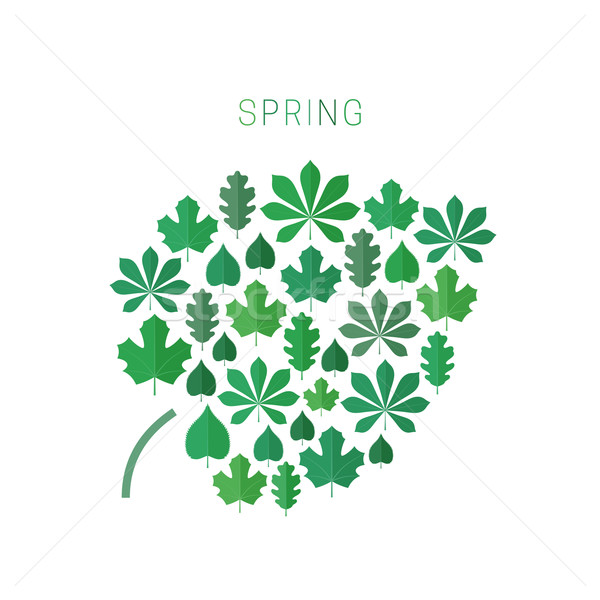 Green spring leaves. Stock photo © biv