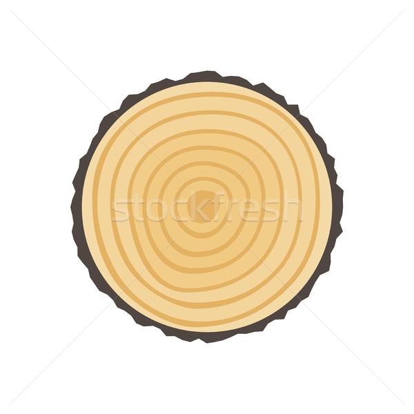 Zag gesneden boomstam boom ringen vector Stockfoto © biv