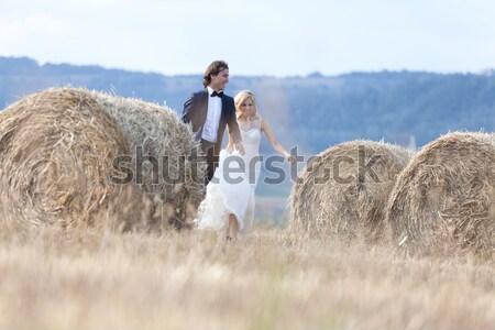 Magie kus jonge echtpaar zoenen hooi Stockfoto © blanaru