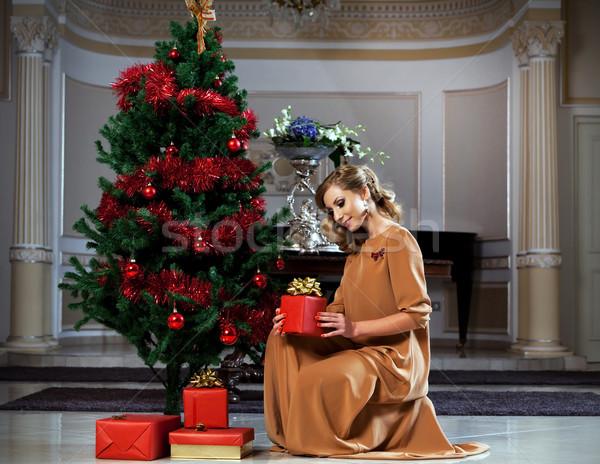 Christmas Time Stock photo © blanaru
