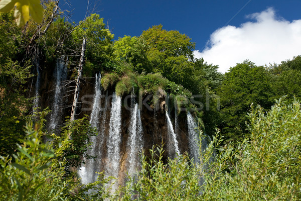 Waterfalls Stock photo © blanaru