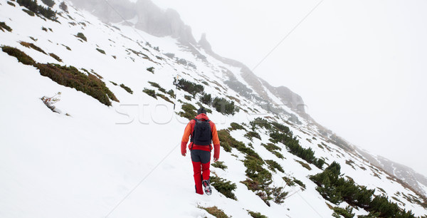 Man in the moutains Stock photo © blanaru