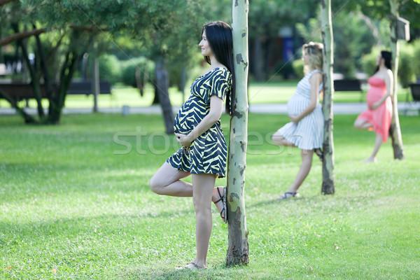Gelukkig verwachtingen drie jonge zwangere vrouwen Stockfoto © blanaru