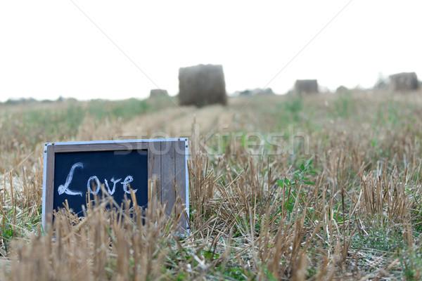 Love in small things Stock photo © blanaru