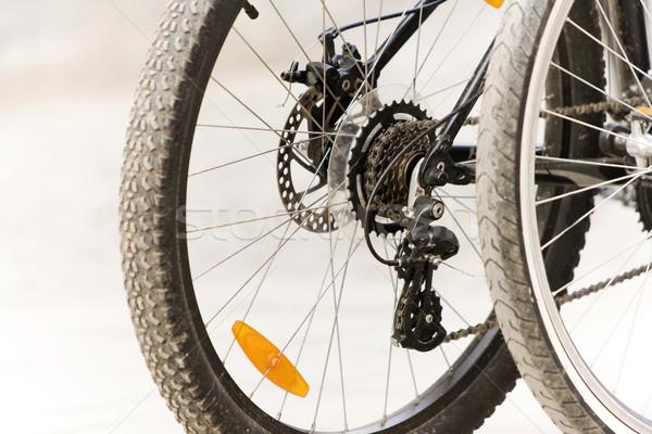Bicycle gears Stock photo © blanaru