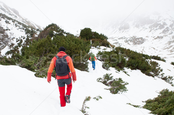 Two man on a mountain hike Stock photo © blanaru