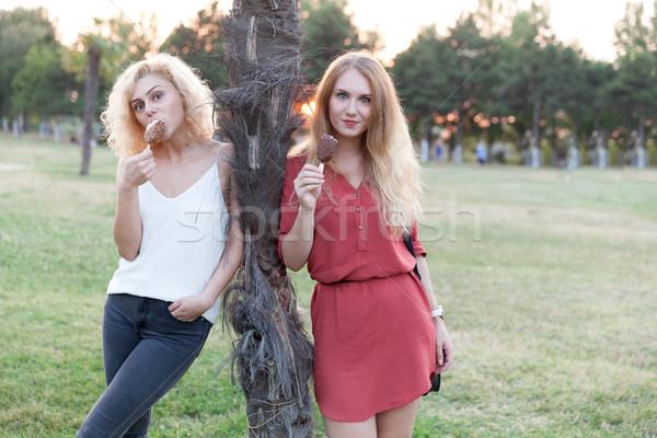 Ijs plezier twee meisjes genieten park Stockfoto © blanaru