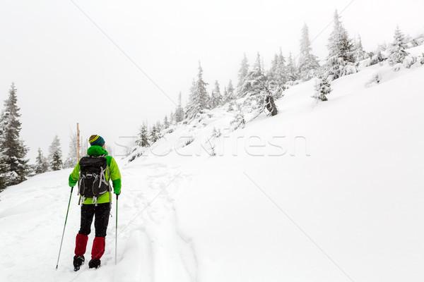 Winter hike in white woods when snowing Stock photo © blasbike