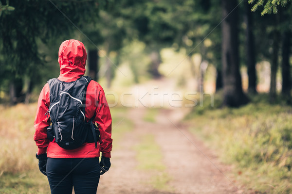 Woman hiking in autumn woods Stock photo © blasbike