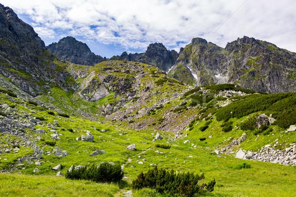 ösztönző hegyek tájkép kilátás napos nyár Stock fotó © blasbike