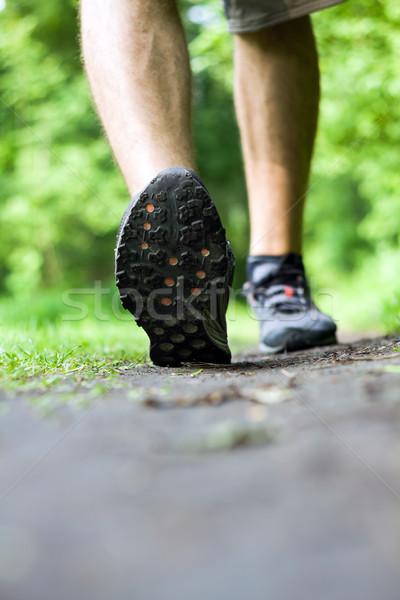 Stock fotó: Sétál · fut · nyom · nyár · erdő · természet