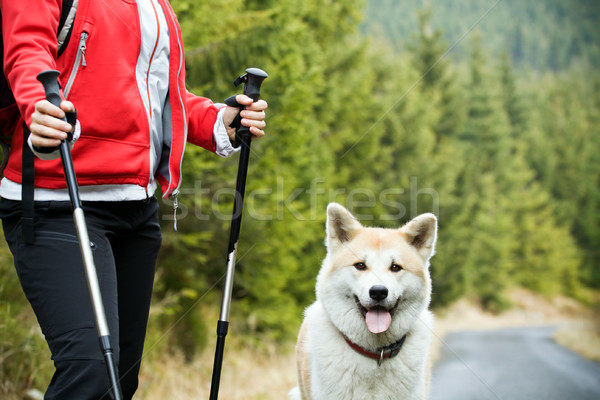 Nordic Walking with dog Stock photo © blasbike