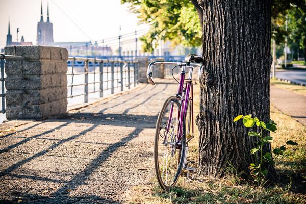 Estrada fixo bicicleta rua árvore engrenagem Foto stock © blasbike