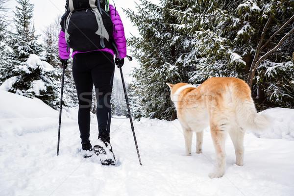 Hátizsákos turista kirándulás sétál tél erdő kutya Stock fotó © blasbike