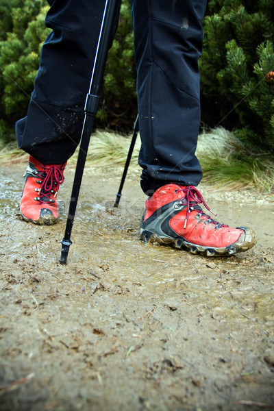 Nordic Walking legs Stock photo © blasbike