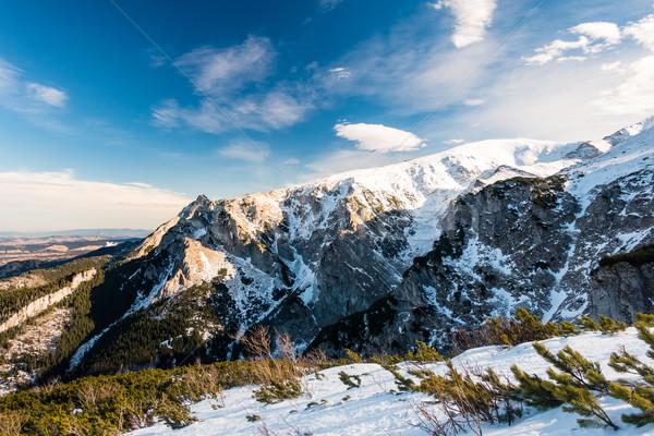 гор Вдохновенный зима пейзаж Польша красивой Сток-фото © blasbike