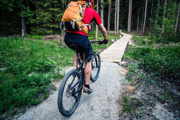 Mountain biker cycling riding in summer forest Stock photo © blasbike
