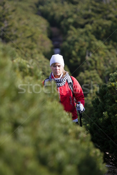 Stockfoto: Wandelen · vrouw · bergen · lopen · najaar