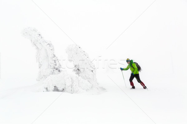 Winter hike climbing in white winter snowy mountains Stock photo © blasbike