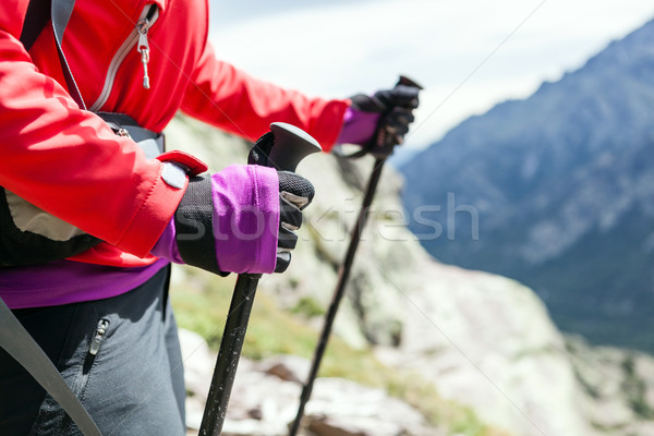 Nordic walking hands in high mountains Stock photo © blasbike