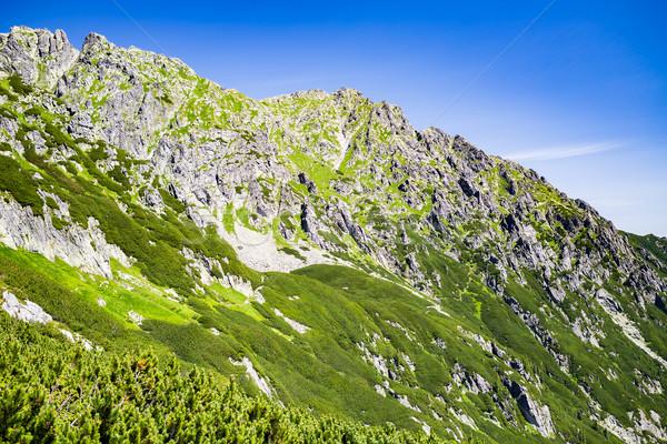 Stok fotoğraf: Dağlar · manzara · görmek · yaz