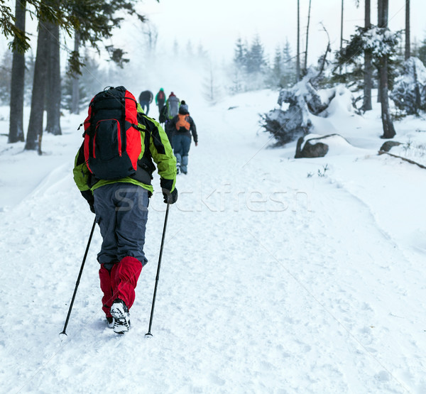 Stock photo: People hiking on snow trail in winter