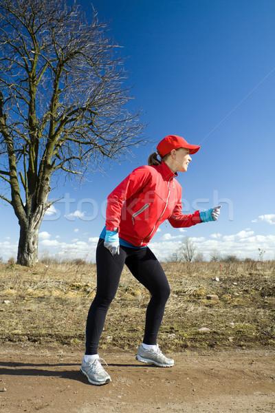 Stock photo: Cross country running