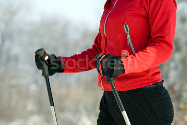 Woman nordic walking in winter Stock photo © blasbike