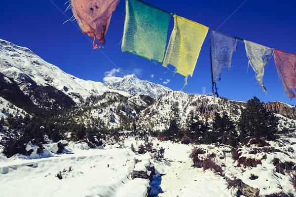 Dağ ilham verici manzara Nepal himalayalar Stok fotoğraf © blasbike