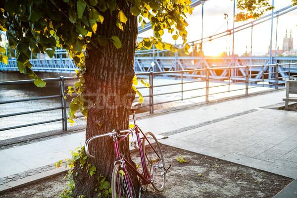 Road fixed bicycle on city street under tree Stock photo © blasbike