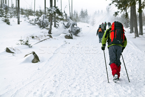 People on winter hiking Stock photo © blasbike