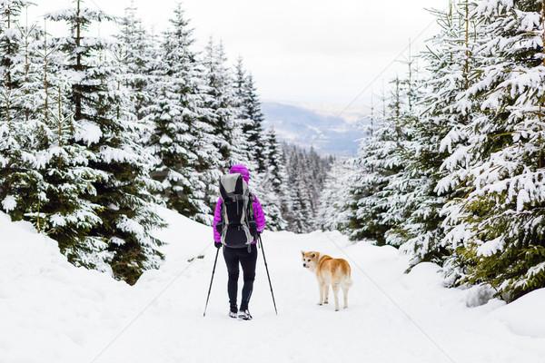 Zaino in spalla escursioni piedi inverno foresta cane Foto d'archivio © blasbike