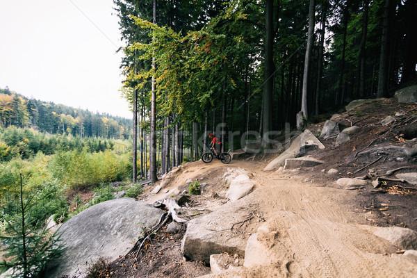 Mountain biker riding cycling in autumn forest Stock photo © blasbike