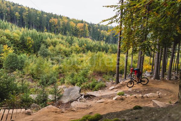 Dağ binicilik bisiklete binme sonbahar orman Stok fotoğraf © blasbike