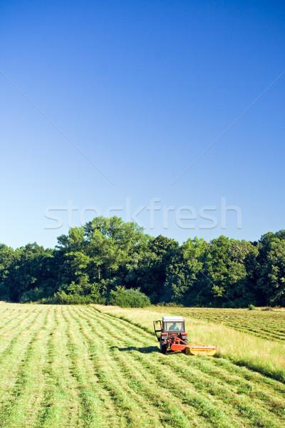 Traktör çalışma yaz alan yeşil ot gökyüzü Stok fotoğraf © blasbike