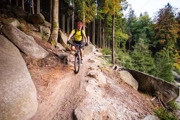 Górskich jazda konna rowerowe jesienią lasu Zdjęcia stock © blasbike